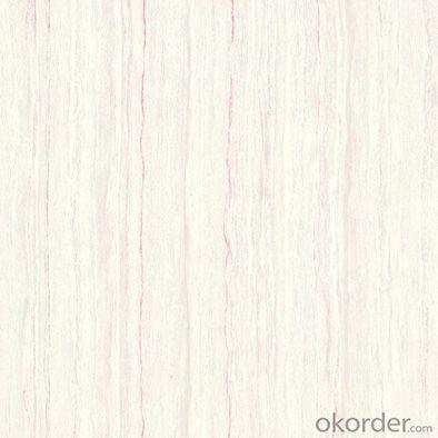 Polished Porcelain Tile Super White TT36058