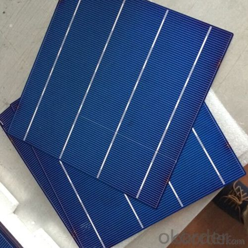 Poly 3BB 4BB Solar Cells with Low Price 156*156mm