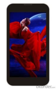 6 inch Dual core Tablet PC Capacitive Touch Screen LCD 16:9,960*540 IPS,OGS
