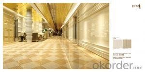 Full Polished Glazed Porcelain Tile CMAXNJ001