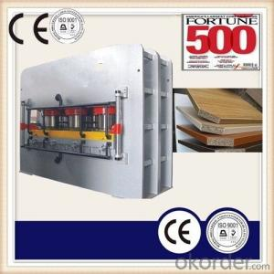 China Wood Grain Furniture Boards Laminate Hot Press Machine
