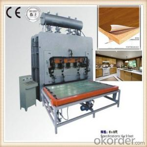 Full Set Furniture Production Line Made in China