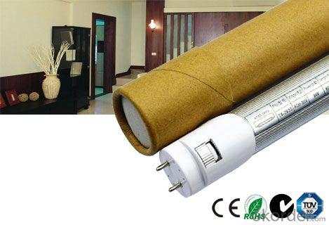 Most Economic LED Tube Light