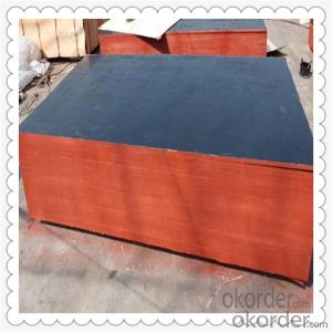 Black Color Poplar Material Film Faced Plywood