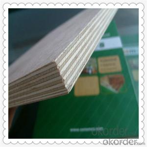 White Color Veneered Okoume Material Marine Plywood