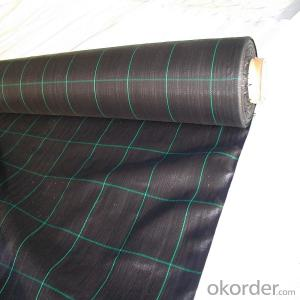 Agricultural Black PP Weed Barrier Fabric on Sale