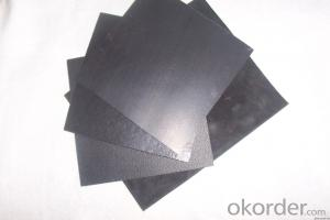 Composite HDPE ASTM Standard Geomembrane / HDPE Geomembrane / ASTM Standard Geomembrane for Landfill