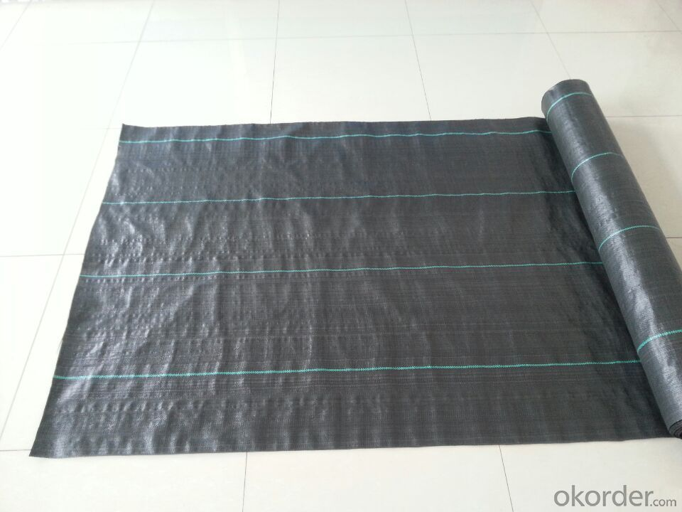 PP Woven Ground Cover Weed Barrier Plastic Fabric Mat