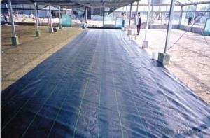 Small Roll Or Cutting Piece Pp NonWoven Fabrics Used For Out Door Plant Cover Or Weed Mat