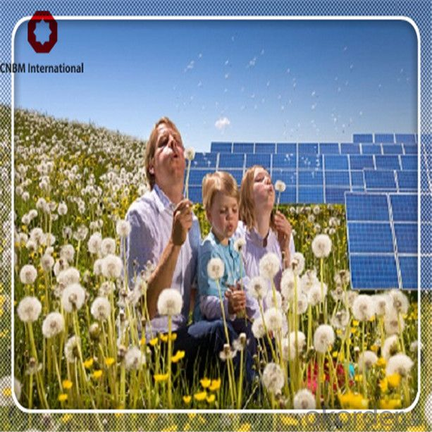 Polycrystalline Solar Panel 250watt 60pcs Solar Cell High Efficiency and Low Price