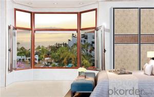 PVC Sliding Window /Hung /Casement window with Double Glass