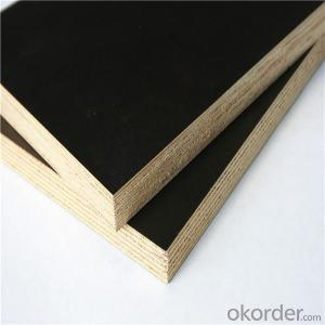 Black Film Faced Plywood 1220x2440 1250x2500