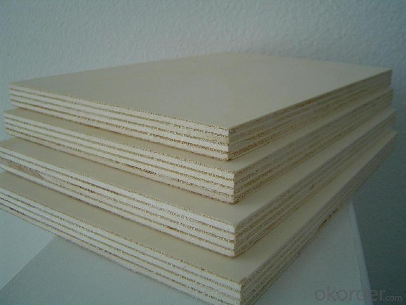 Bintangor/Okoume/Birch/Pine Faced Plywood