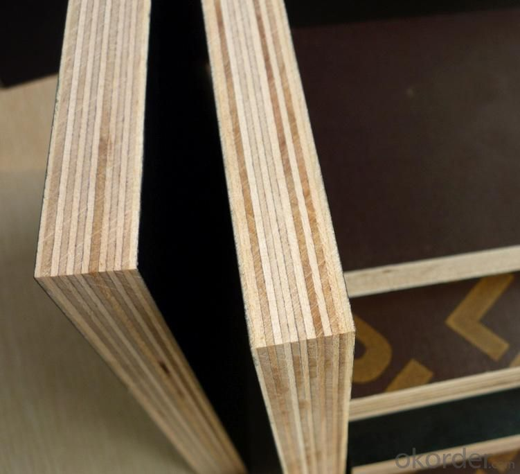 Buy Construction Plywood Sheet Film Faced Plywood Price
