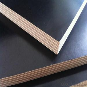 18mm Wbp Glue Brown/black Film Poplar/Hardwood/Bich core Film Faced Plywood