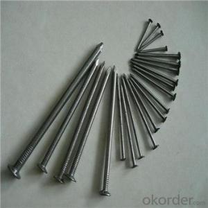 Common Nail Galvanized Nail BWG4-20 Good Quality
