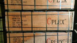 CPLEX 15x1220x2440mm, álamo, Madera contrachapada filmada, negro