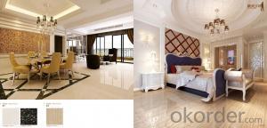 Full Polished Glazed Porcelain Tile CMAX-TLES001