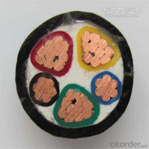 Electrical Wire and Cable Supplier for Xlpe  Single Core Cable