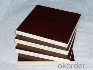 CPLEX 12x1220x2440mm, álamo, Madera contrachapada filmada, marrón