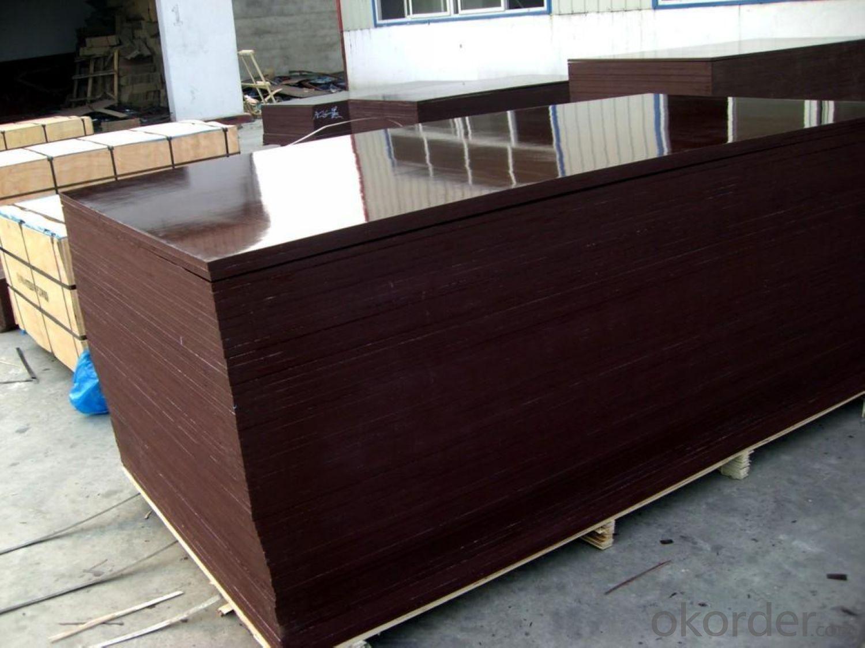 CPLEX 9X610X2440mm, Álamo, Madera contrachapada filmada, marrón