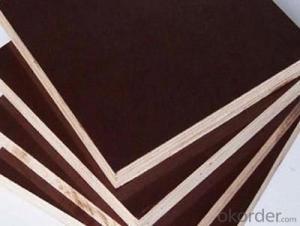 CPLEX 12X610X2440mm, Álamo, Madera contrachapada filmada, marrón
