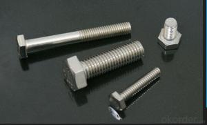 DIN933 Hexagon Head Bolt In Standard and Nonstandard