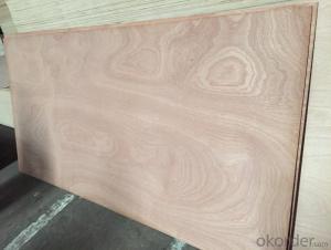 18mm película marrón madera contrachapada se enfrentan con el logotipo de
