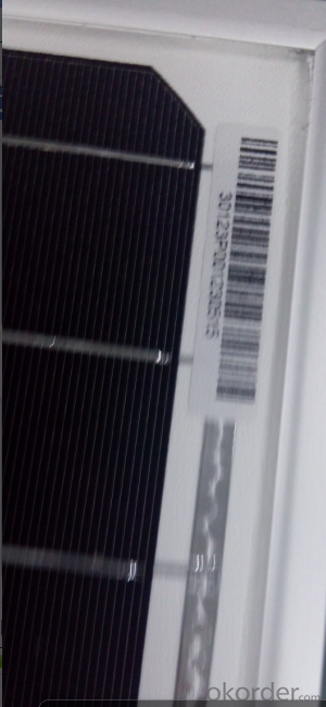 Solar Module-40W Mono  from CNBM with Good Quality
