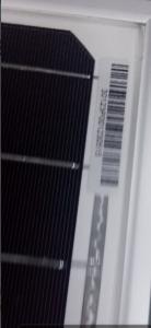 Solar Module-40W Mono  from CNBM with Good Quality