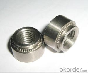 SS Socket Head Cap Screw Bolts Standard and Nonstandard Size