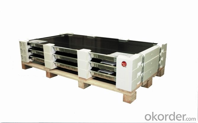 High Efficiency Different Size 3-Busbar Solar Cell Chian Factory