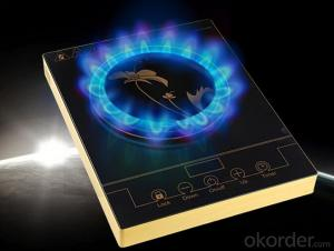 Home Appliance High Quality Energy Save Induction Cooker