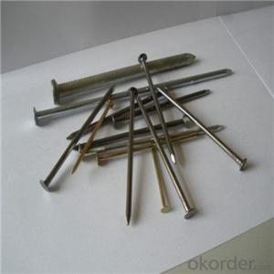 Low Price Common Nails High Quality Low Carbon Steel Q195 , Q215