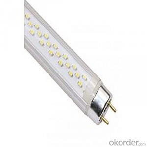 T8 LED Tube Light Korean LED Tube