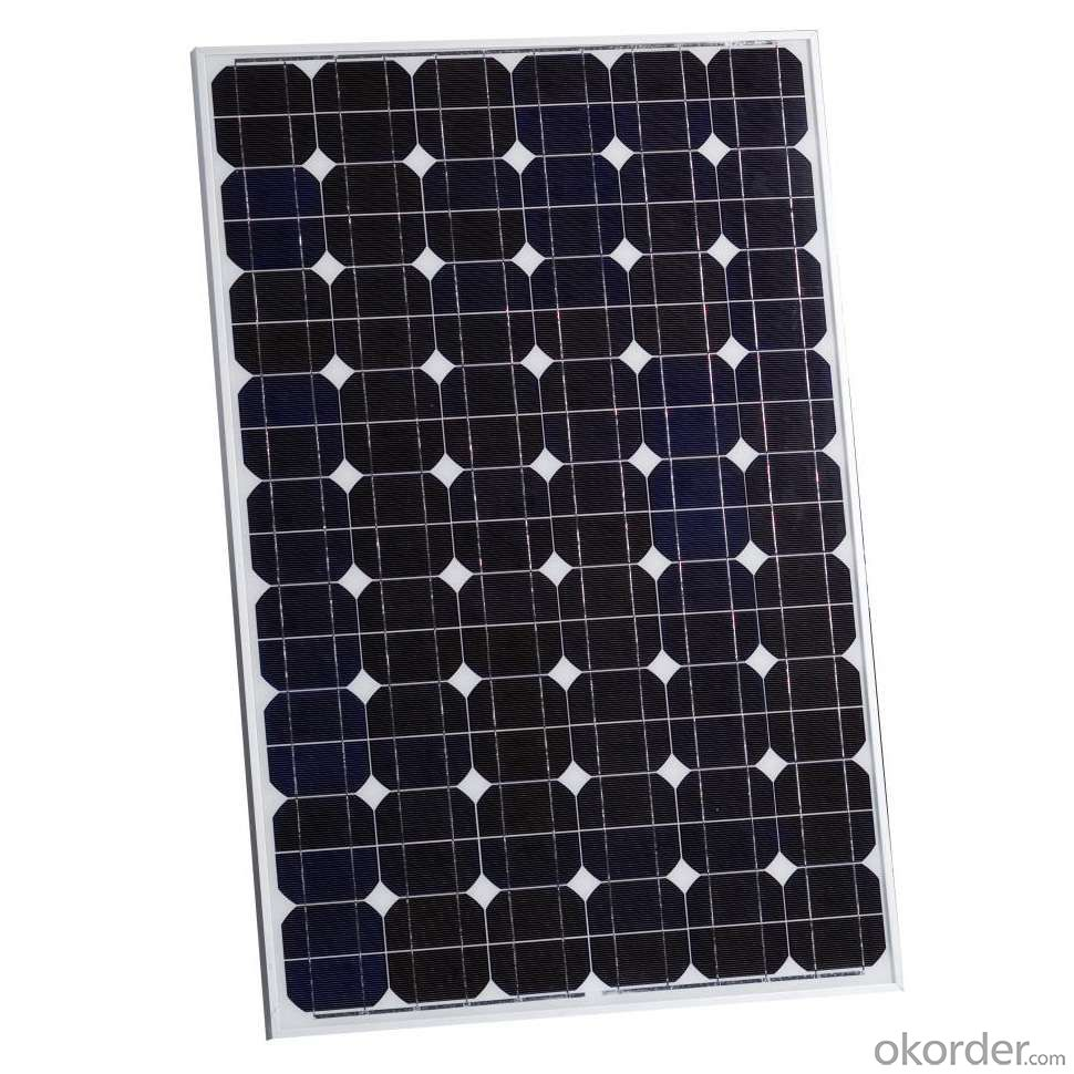 Poly Chia Solar Panel Price with Factory Price