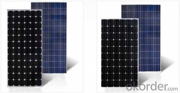 300W Solar Panel with TUV IEC MCS CEC IDCOL SONCAP Certificates