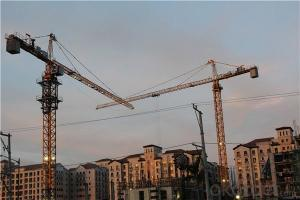 Flat Top Tower Crane TC 5013A for Construction