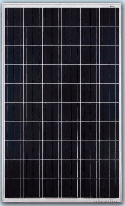 140W/145W Solar Panel with TUV IEC MCS CEC IDCOL SONCAP Certificates