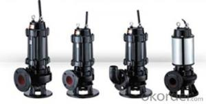 WQ Series Sewage Vertical Centrifugal Water Pumps