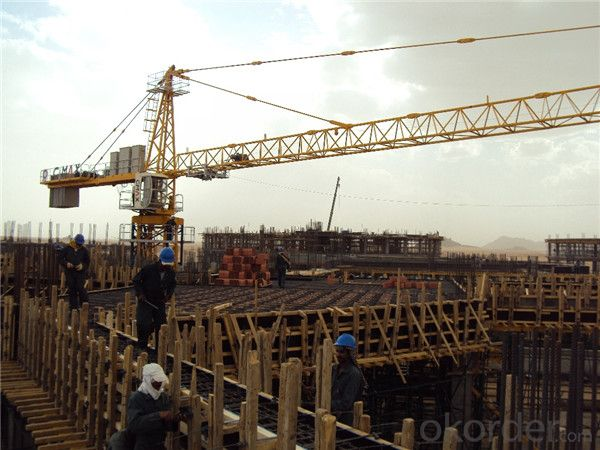 Flat Top Tower Crane TC 6520 for Construction