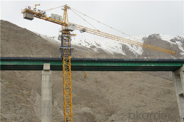 Flat Top Tower Crane TC 6016 for Construction