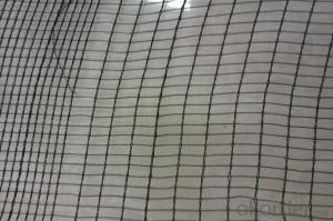Anti Hail Net Green Color White Color  Good quality