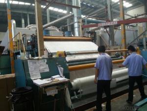 C glass Chopped Strand Mat- High Quality CCSM