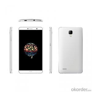 Smartphone 5.5