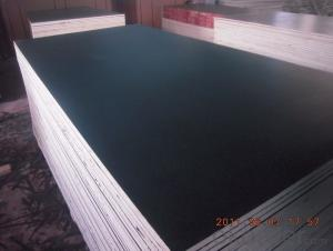 Brown Film Faced Plywood Shuttering Plywood Poplar Core WBP Glue Construction Plywood 18mm