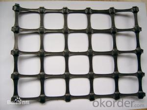 HDPE Steel Plastic Compound Compolex Building Pavement Geogrid Plastic Steel Compositon Geogrid