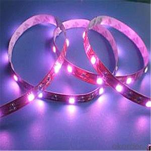 LED Strip Light LED Strip 4.8 Watt per Meter