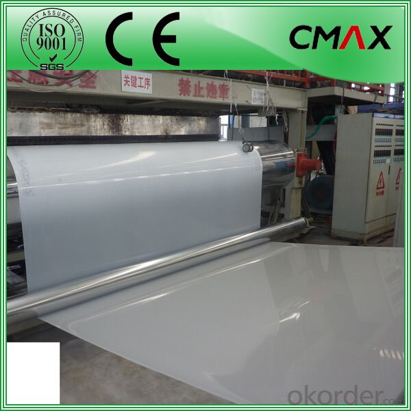 HDPE Geomembrane/Membrane White and Black lining
