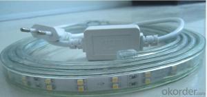DecorativeLedLights UL Approved 2 Years Warranty Waterproof Warm White Light